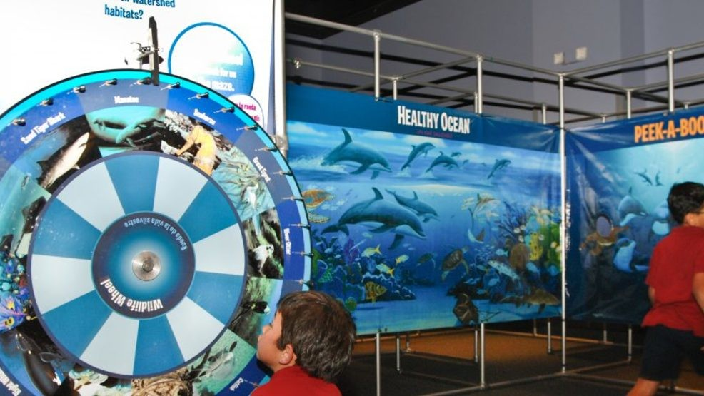 Exhibit at Michigan museum explores science of watersheds | WWMT